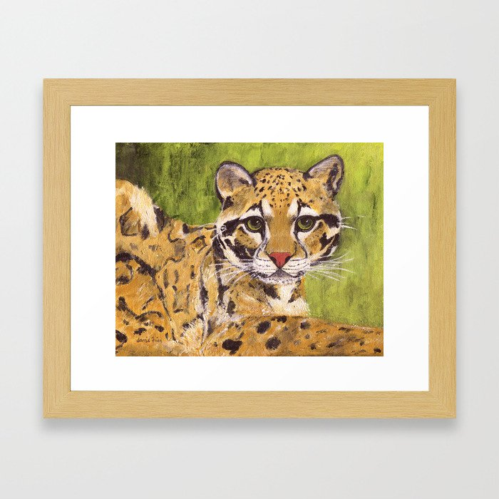 Clouded Leopard Framed Art Print