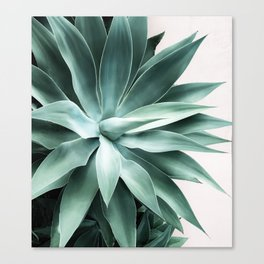 Bursting into life Canvas Print