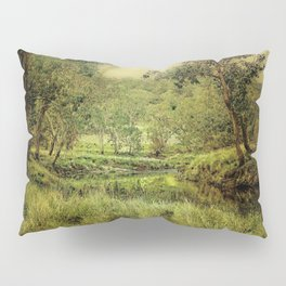 Billabong Pillow Sham