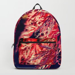 WEEPING MAPLE TREE IN FALL COLORS Backpack