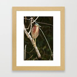 Just Sit Here And Wait Framed Art Print