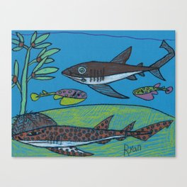 Spotted Catshark Canvas Print