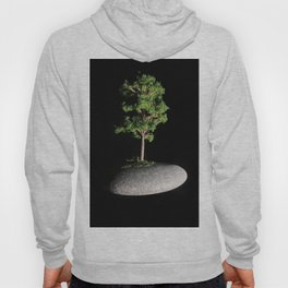 The First Sanctuary Hoody