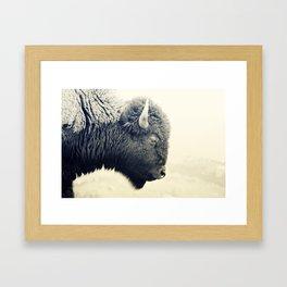 Bison II Framed Art Print
