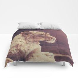 Lioness Comforters