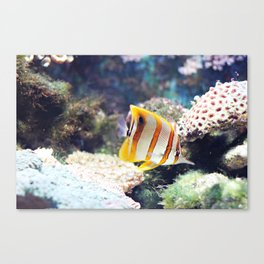 The sea, source of all life Canvas Print