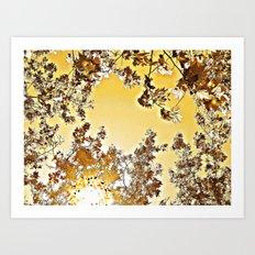 Dorado Sky Art Print