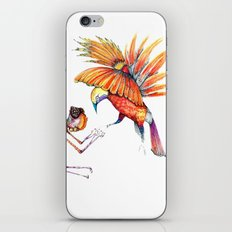 Holiday drawings:  Dragonfly & Bird of paradise iPhone & iPod Skin