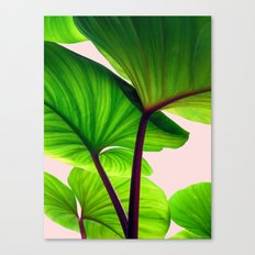 Charming Sequence Nature Art #society6 #lifestyle #decor Canvas Print