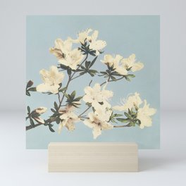 Minimal Art Watercolor Flower Soft Blue Mini Art Print