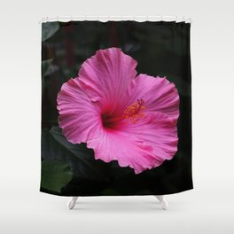 Hibiscus at Eden Project Shower Curtain