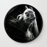donkey Wall Clocks featuring donkey by chicco montanari