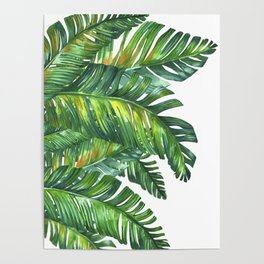 tropical green 2 Poster