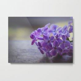 Flower_14 Metal Print