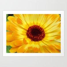 summerfeeling Art Print