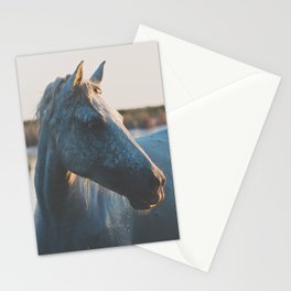 a horse in portrait ... Stationery Cards