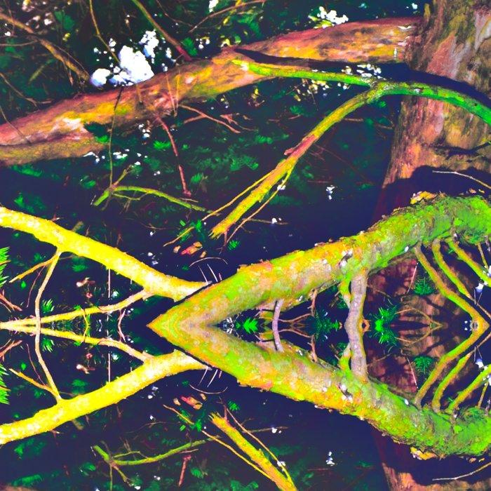 Treeflection V Leggings