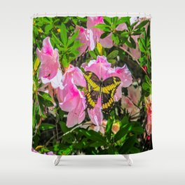 Pink Flowers and the Butterfly Shower Curtain
