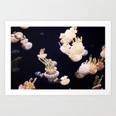 The Jellies Art Print