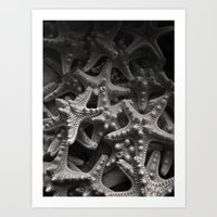 starfish Art Prints featuring Starfish by Melissa Batchelder Photography