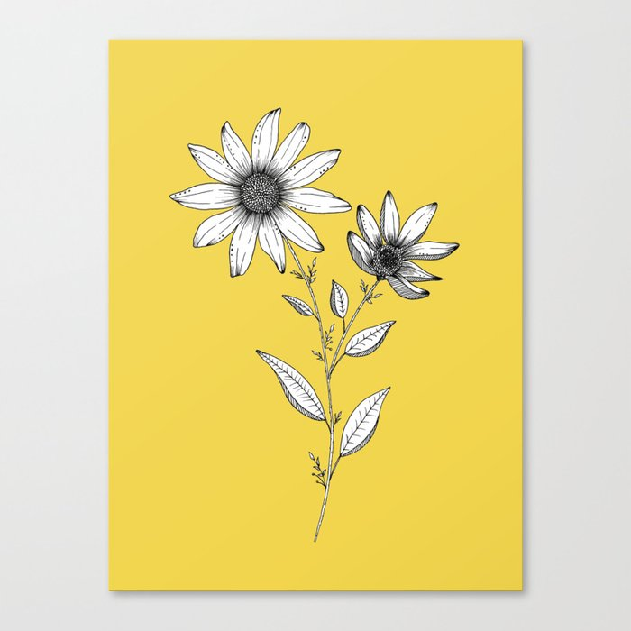 Wildflower line drawing | Botanical Art Canvas Print