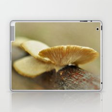 Silver and Gold Laptop & iPad Skin
