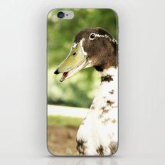 Quack iPhone & iPod Skin