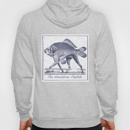 IF FISHES HAD LEGS (navy) Hoody