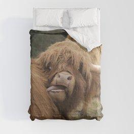 Funny Scottish Highland cow Comforters