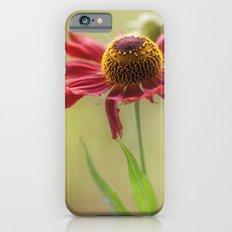 Heleniums Slim Case iPhone 6s