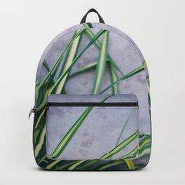 Palm Palette Backpack