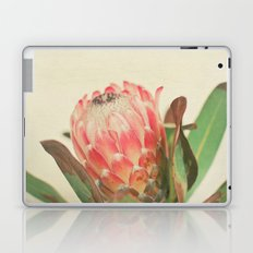 Pink Ice Laptop & iPad Skin