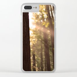 Sunbeams Through Redwoods - San Francisco, California Clear iPhone Case