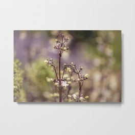 Fairy bloom Metal Print