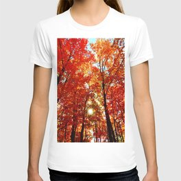 Sun in the Trees T-shirt