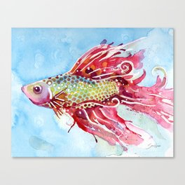 Fish Swim Canvas Print
