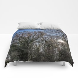 Beautiful day in a winter forest Comforters