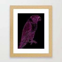 Rainbow Lorri in PInk and Black Framed Art Print