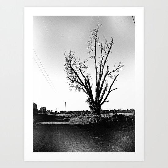 not a pretty tree Art Print