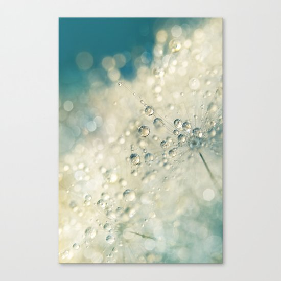 Dandy Dazzle Canvas Print