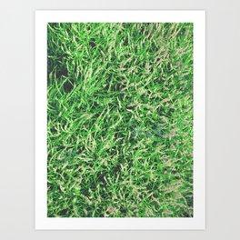 Heather Garden | Texture | Plants Art Print