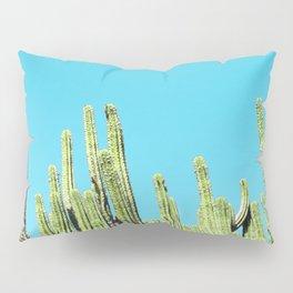 Desert Cactus Reaching for the Blue Sky Pillow Sham