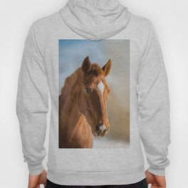 Brown Horse Winter Sky Hoody