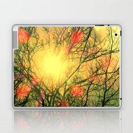 Sunny Beech Laptop & iPad Skin