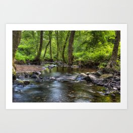Summer Stream - I Art Print