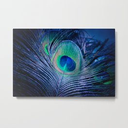 Peacock Feather Blush Metal Print