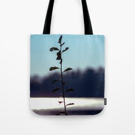 Concept nature : respice finem Tote Bag