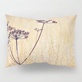 Somewhere Better Pillow Sham