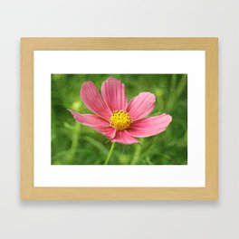Keep your face to the sunshine... Framed Art Print
