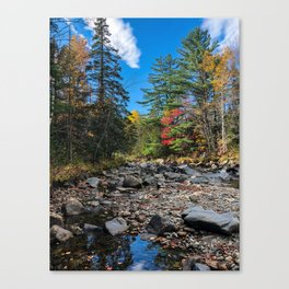 Fall on the Carrabassett (4) Canvas Print